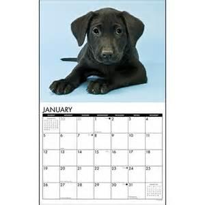 lab-calendar
